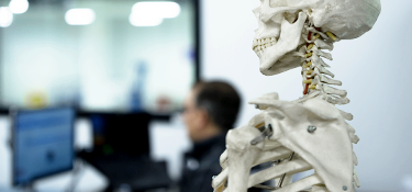 person working on computer with skeletal