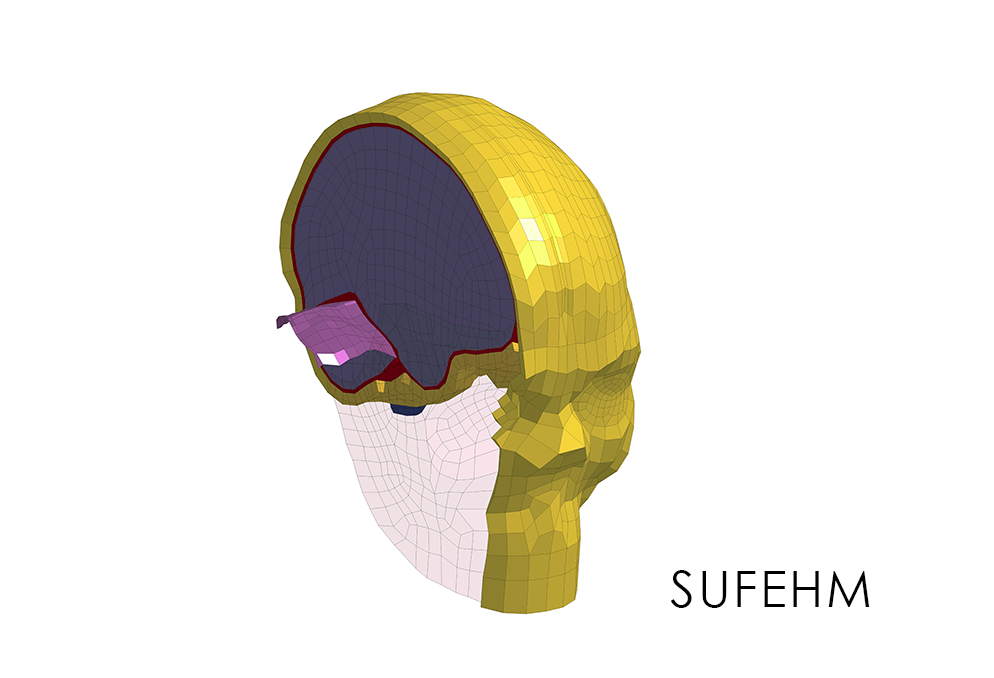 SUFEHM Headform Slice View with SUFEHM caption